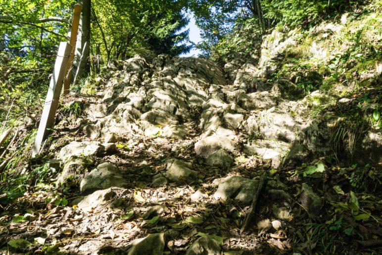 Eine Felsstufe auf dem schönen Bergsteig