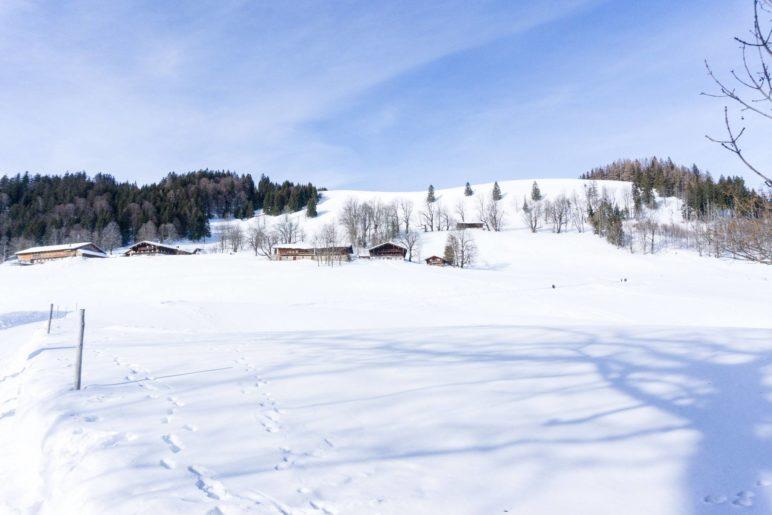Winterwanderung zum Berggasthaus Hohe Asten