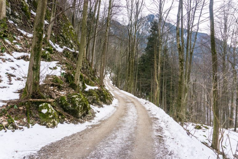 Auf dem Abstiegsweg vom Petersberg nach Flintsbach