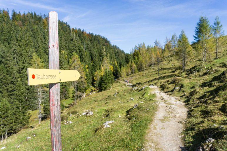 Auf dem Weg von der Hütte zum Taubensee
