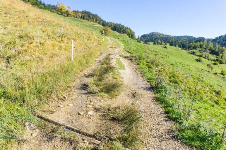 … dann fast eben entlang der Almwiesen zur Rinderbrachalm