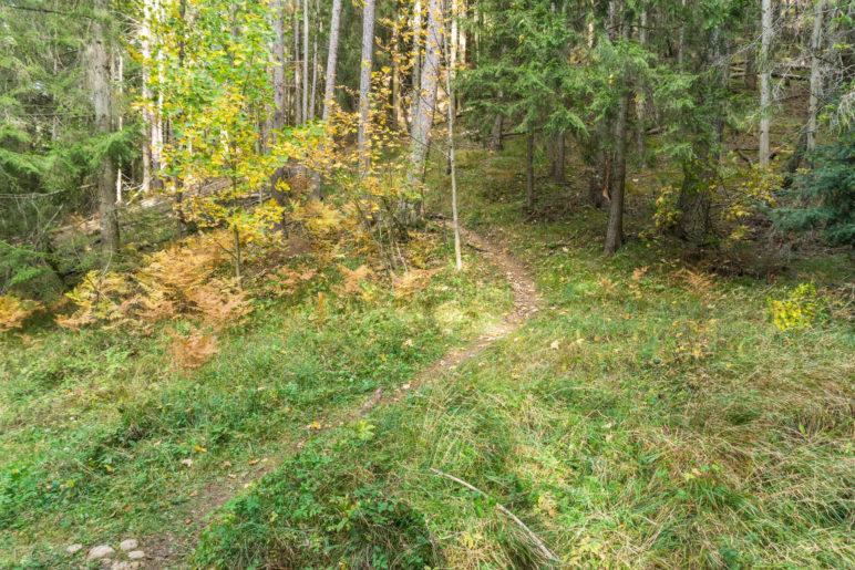 Weg vom Fahrweg und auf dem schmalen Bergsteig