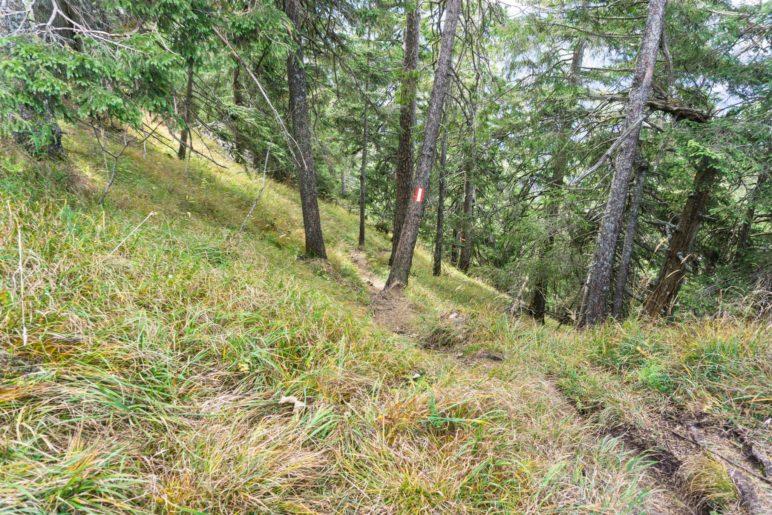Steiler Abstieg vom Wildbarren