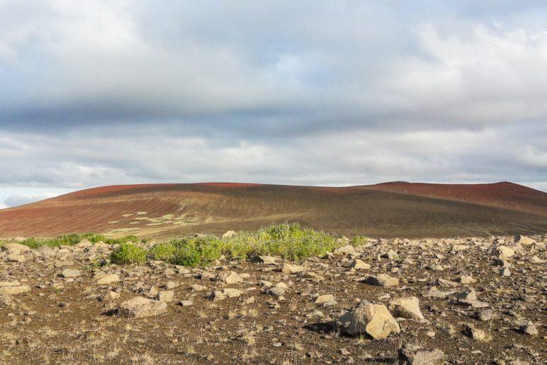 Rote Hügel und sogar etwas Grün im Vordergrund