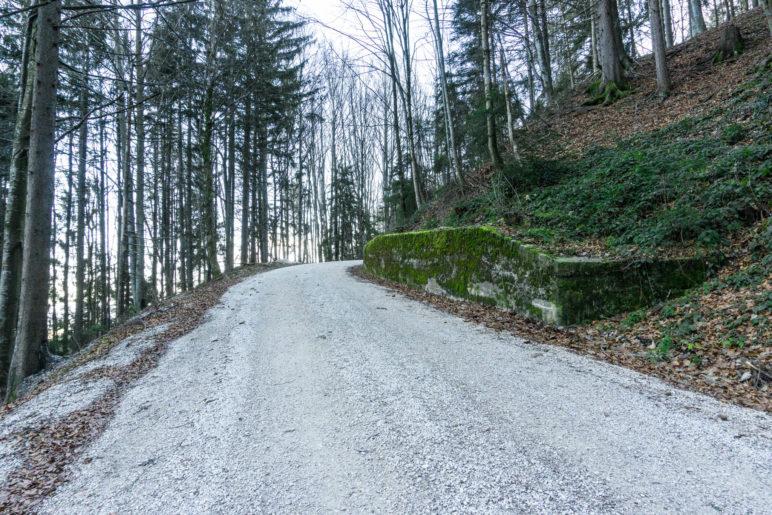 Der breite Aufstiegsweg auf der Nordseite des Teisenbergs