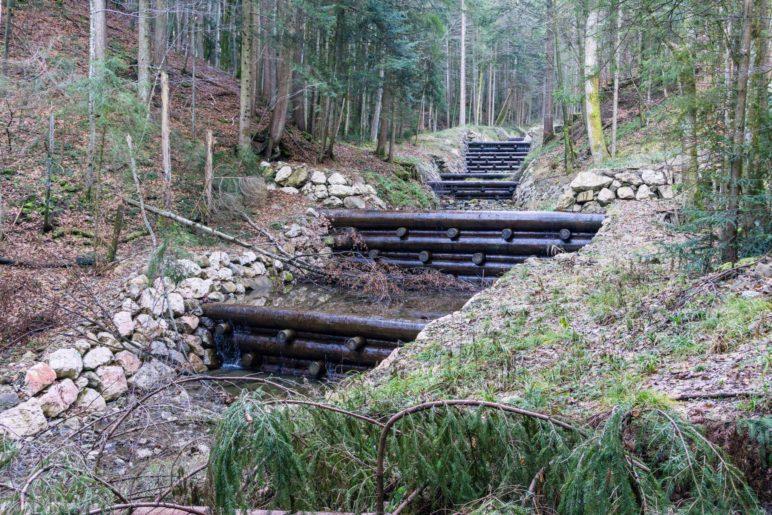 Solche und gemauerte Stufen im Bach werden wir auf der Wanderung mehrfach sehen