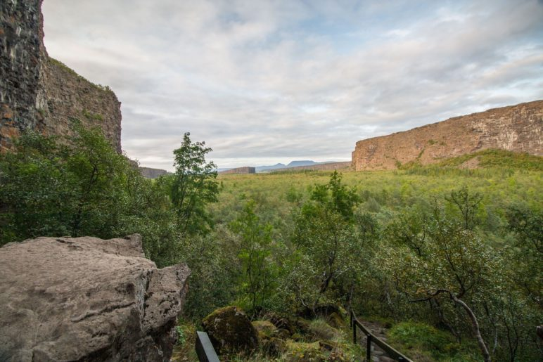 Vom etwas erhöhten Standpunkt aus haben wir einen guten Blick über die Ásbyrgi-Schlucht und den kleinen Wald bis zum Eyjan-Felsen