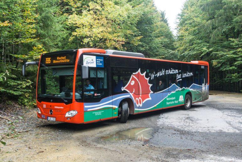 Mit dem Igelbus fahren wir kostenlos zum Startpunkt unserer Wanderung