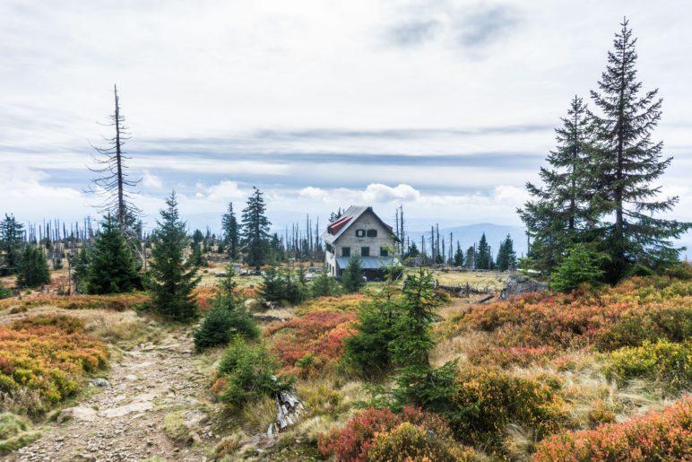 Auf dem Weg zum Waldschmidthaus