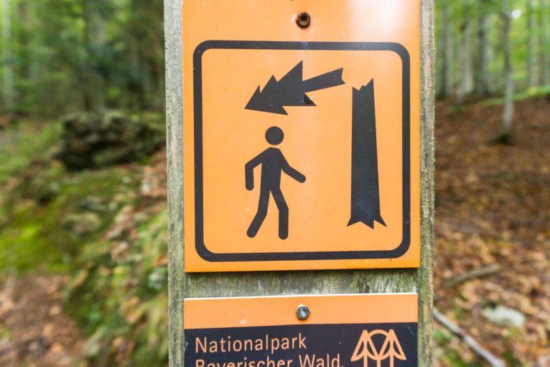 Das Warnschild weist eindrücklich darauf hin, dass wir im naturbelassenen Wald wandern