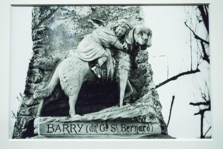 Das Denkmal für Barry vom Hospiz auf dem Grossen St. Bernhard