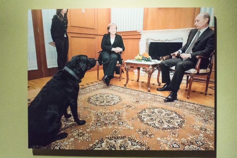 Merkel, Putin und ein Labrador