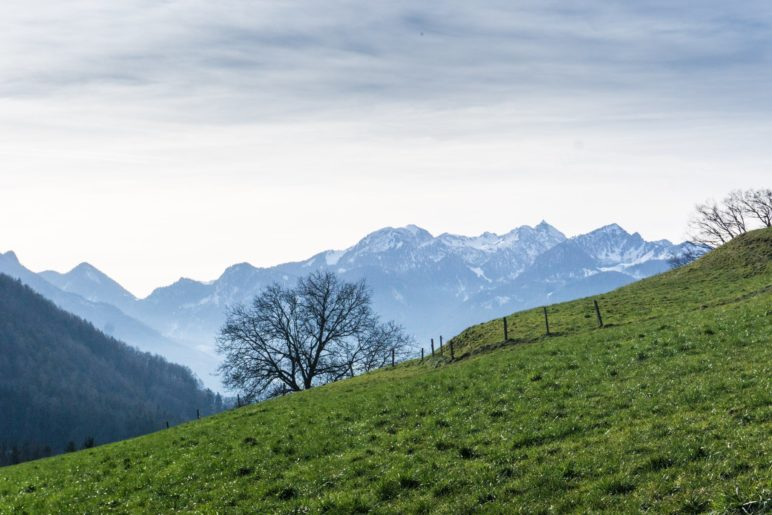 Ein erster Wendelsteinblick auf dem Ausfstiegsweg zur Dandlbergalm
