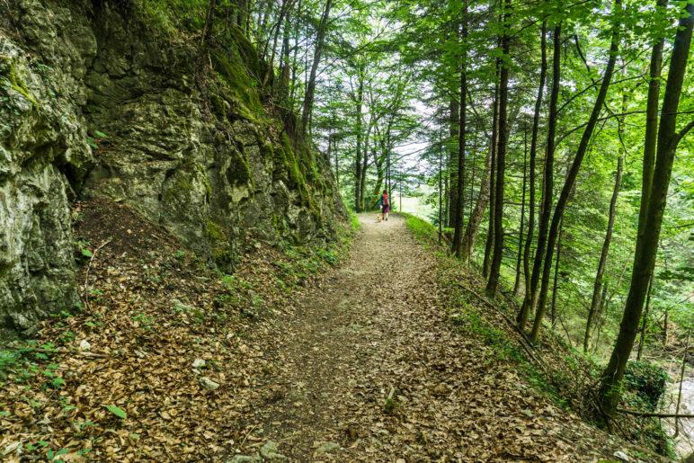 Auf dem jetzt leichten Abstiegsweg hinunter nach Rottau