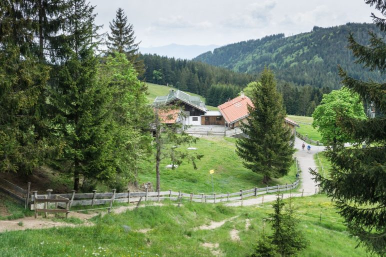 Die Schwarzenberg-Alm vom Gipfelweg aus gesehen