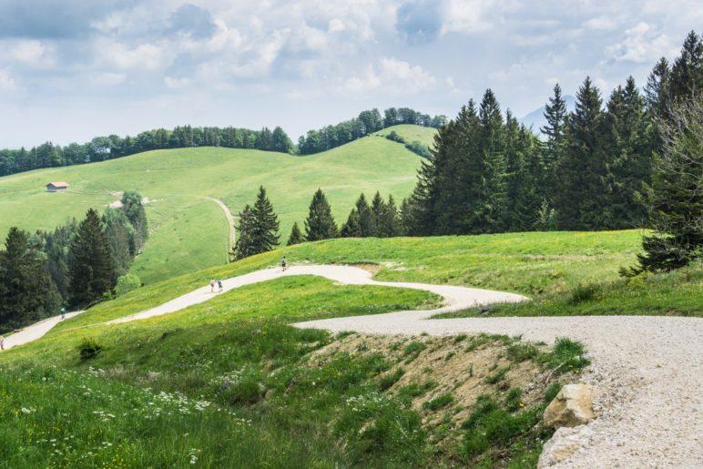 Ungefähr am höchsten Punkt der Wanderung: Jetzt geht es bergab über die Almwiesen am Breitenberg