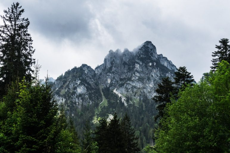 Blick zurück zur mächtigen Nordwand der Gedererwand