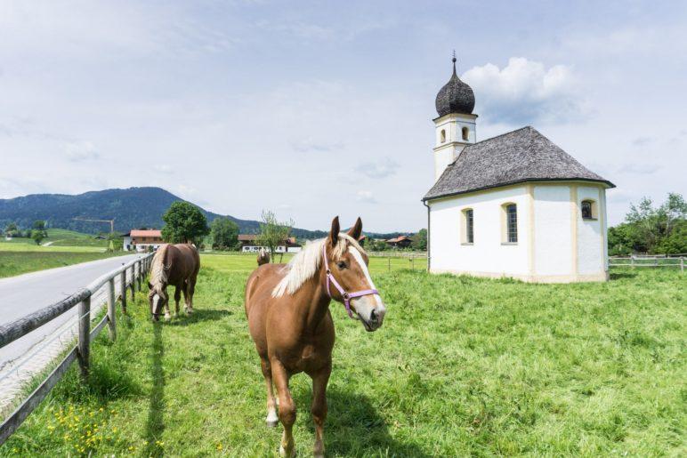 Direkt an der Leonhardi-Kapelle in Hundham beginnt die Wanderung auf den Schwarzenberg