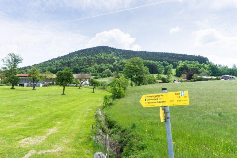 Noch sehen wir dem Schwarzenberg nicht an, dass er ein echter Panorama-Gipfel ist