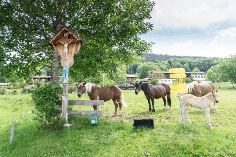 … und Pferden neben dem Wegkreuz.