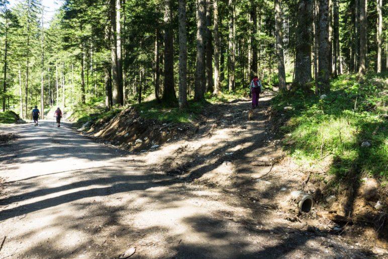 Der unbeschilderte Abzweig auf den Bergsteig zur Schuhbräualm