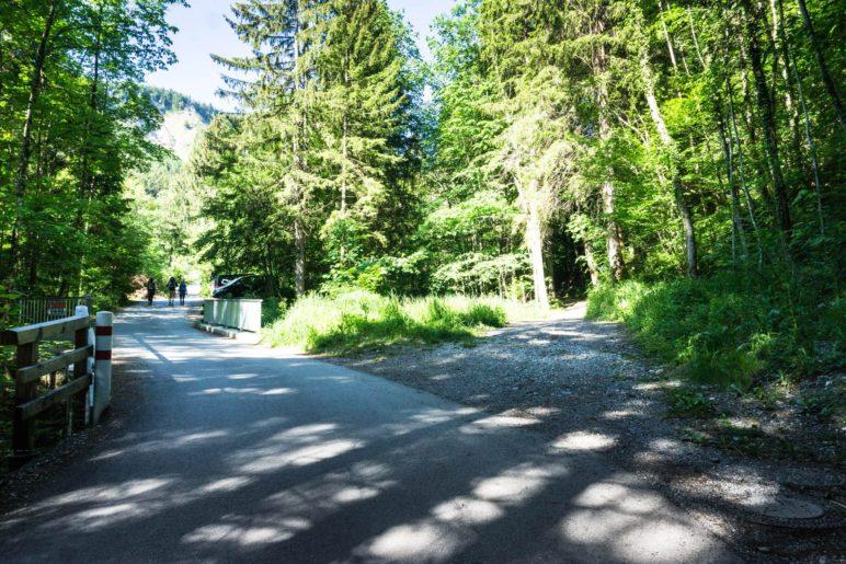 Abzweigung: Links der langweilige Fahrweg, rechts der kurzweilige Bergsteig
