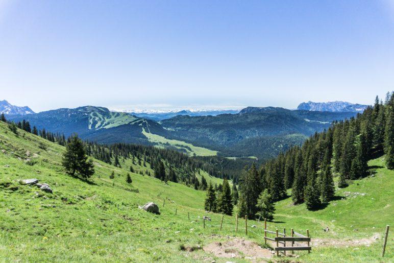 Ein Blick zurück über die Almwiesen zu Kaiser und in die Alpen