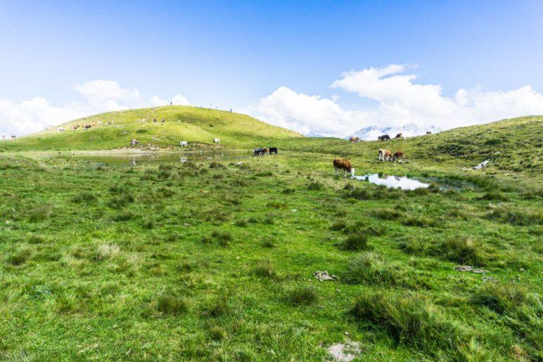 Der höchste Punkt von Salfains liegt auf genau 2000 Metern