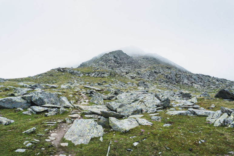 Unser Ziel, der Gamskogel-Gipfel, liegt noch in den Wolken