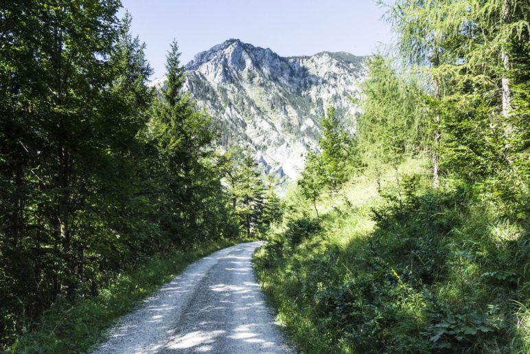 Abstieg mit Traunsteinblick