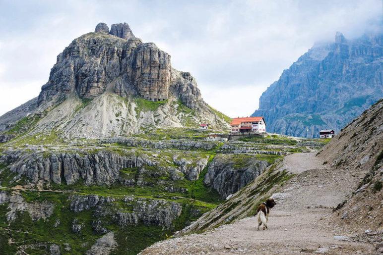 Auf den letzten Etappen führt der Sentiero della Pace an der Dreizinnenhütte entlang - Foto: Romy Robst