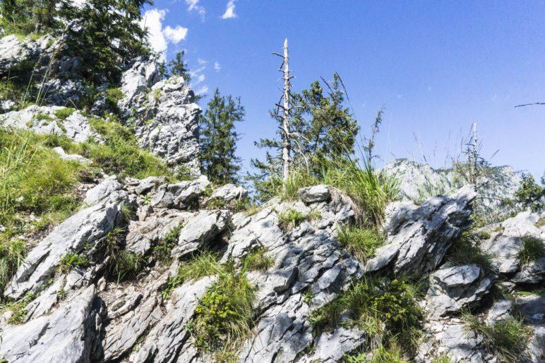 Auf dem Gratweg zum Gipfelkreuz wird es deutlich felsiger als zuvor