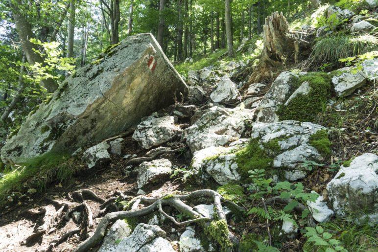 Ein felsiges Stück auf dem Aufstiegsweg