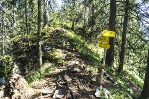 Auf dem Gratweg an der Abzweigung der beiden Abstiegswege