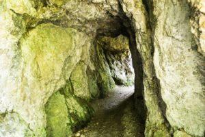 Der Tunnel, kurz bevor wir die Kaltenbachwildnis verlassen