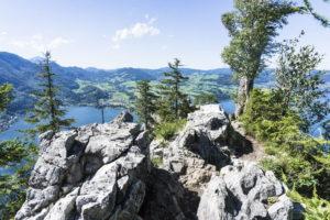 Kurz vor dem Gipfel vom Kleinen Schönberg