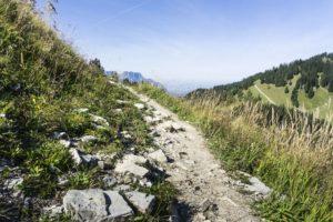 Auf dem Abstiegsweg, dem Salzburgersteig oder österreichischem Weg