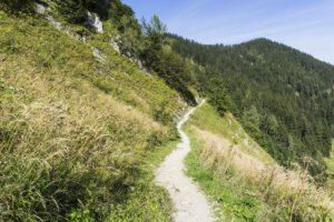 Abstieg am Hang entlang