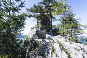 Hier sind die Tritte senkrecht als Griffe auf dem Fels angebracht