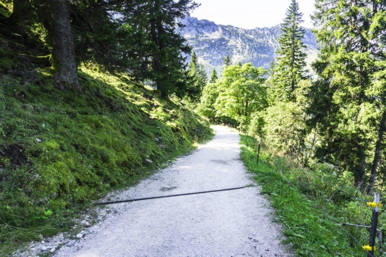 Steil bergab wandern wir zum Eckersattel