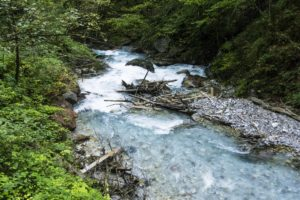 Schwemmholz vor der Wimbachklamm