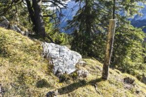 Ein Grenzstein am Ahornbüchsenkopf