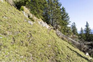 Die kurze Querung einer steilen Grasflanke