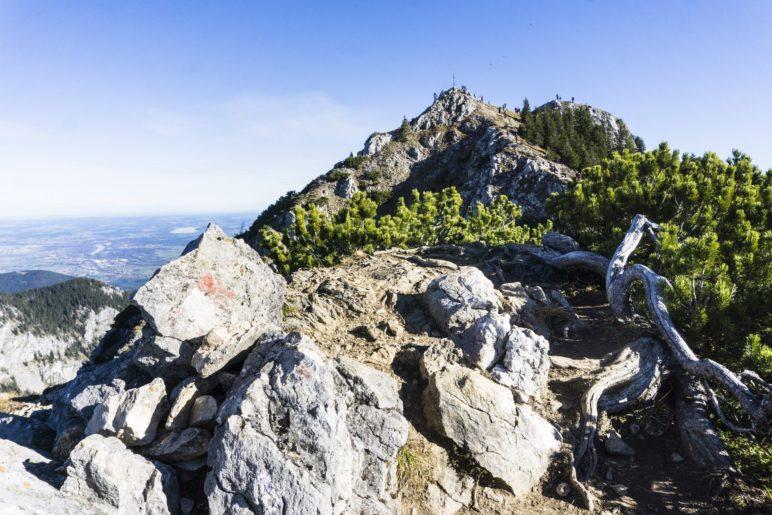 Auf dem Weg zum Wildlalpjoch-Gipfel
