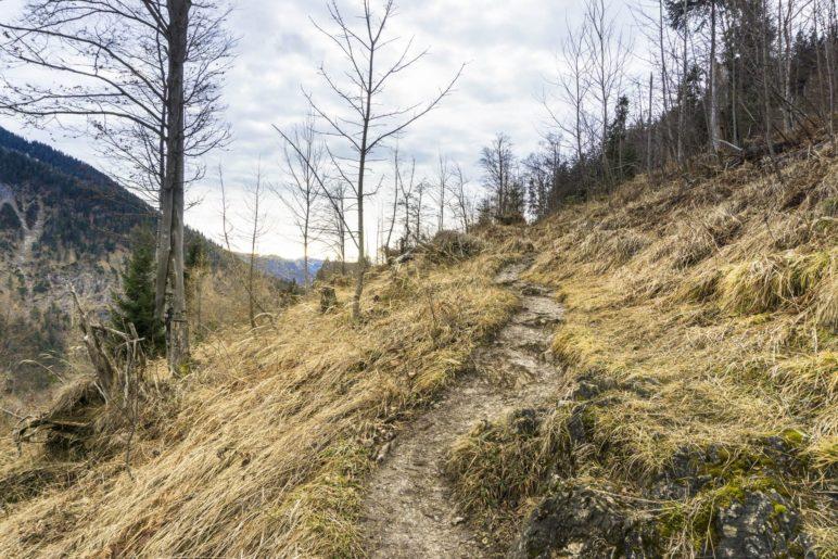 Am Beginn des Weges oberhalb des Ursprungtals