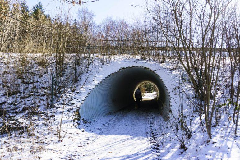 Durch den Tunnel unterqueren wir die Bundesstraße
