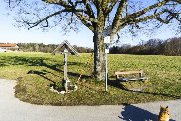 Am Kreuz rechts ab und dann gleich nochmal rechts auf den Feldweg