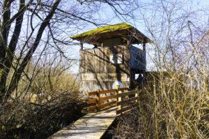 Der Beobachtungsturm Hirschauer Bucht
