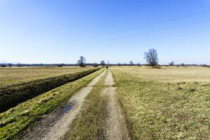 Der Weg am Runst entlang