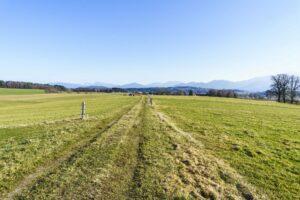 Alpenblick auf dem Wiesenweg nach Hirschau